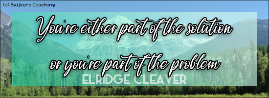 You're either part of the solution or you're part of the problem - ELRIDGE CLEAVER